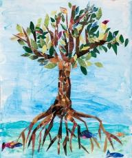 Muhammad Ibrahim / Cayman Islands / Age 6