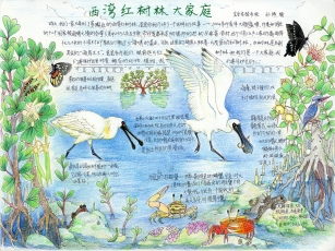 Ziyu Sun / China / Age11 / Chuncheng Painting and Calligraphy Academy