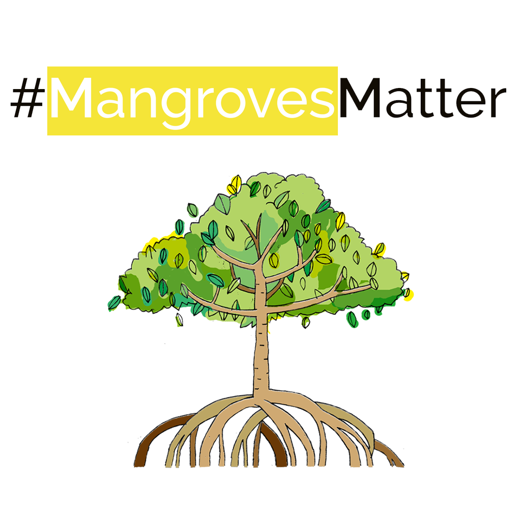 Resources - Mangrove Action Project