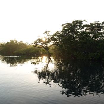 Morning cruise // Jerome Gaw / Ecuador